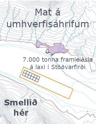 Fiskeldi Austfjarða - Umhverfismat Stöðvarfirði